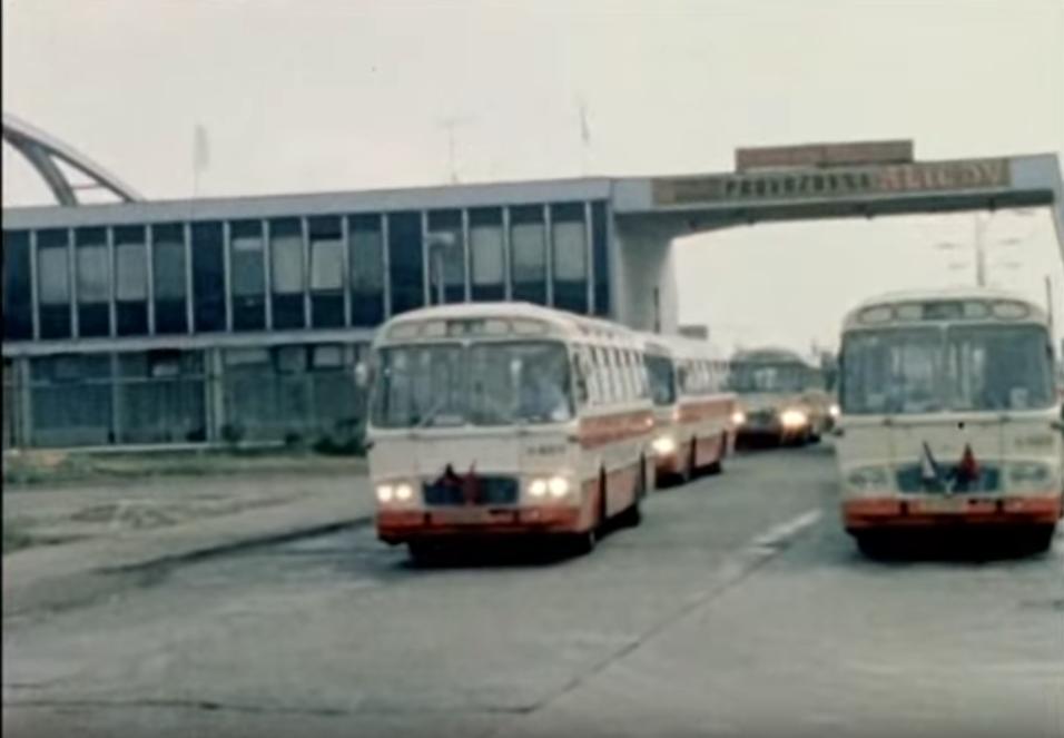 Zelená větev – spartakiáda 1980